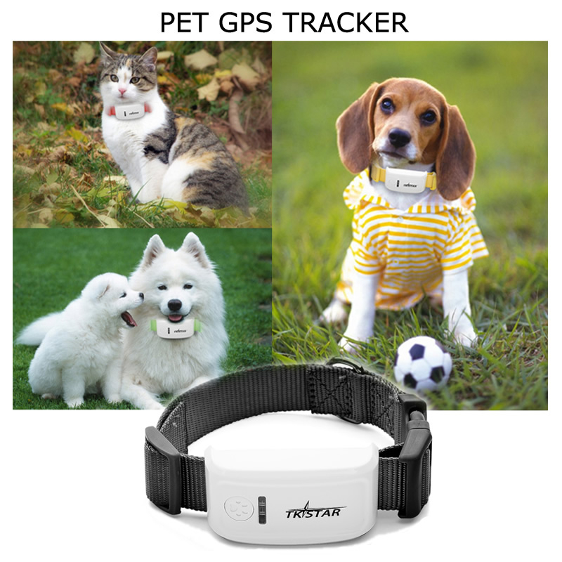 Tracking Devices For Cars >> Pet:dog/cat gps tracking device/tracker/collar, waterproof: buy for sale online for good price ...